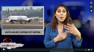 Sign 1 News with Crystal Cousineau - United Airlines suspends pet shipping (3.20.18)