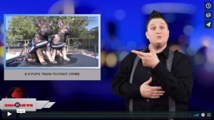 Sign 1 News with Jethro Wooddall - K-9 pups train to fight crime (4.6.18)