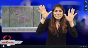 Sign 1 News with Crystal Cousineau - Reward offered after deer shot with arrows (5.1.18)