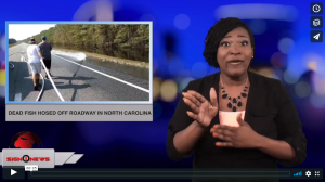 Sign 1 News with Candace Jones - Dead fish hosed off roadway in North Carolina (ASL - 9.23.18)