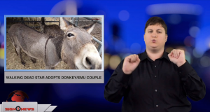 Sign1News anchor Jethro Wooddall - Walking Dead star adopts donkey/emu couple (ASL - 12.6.18)