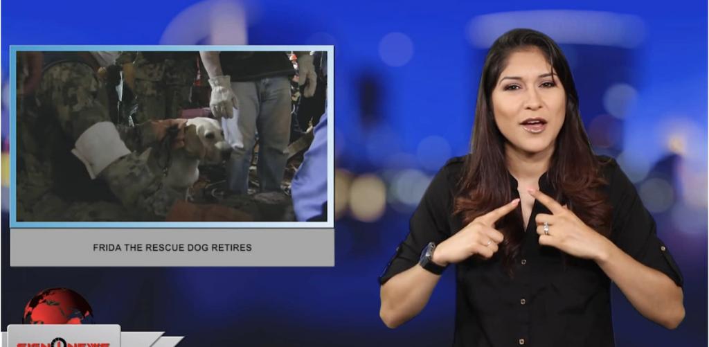 Sign1News anchor Crystal Cousineau - Frida the Rescue Dog retires (ASL - 6.26.19)