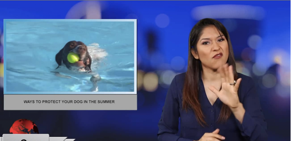 Sign1News anchor Crystal Cousineau - Ways to protect your dog in the summer (ASL - 7.11.19)
