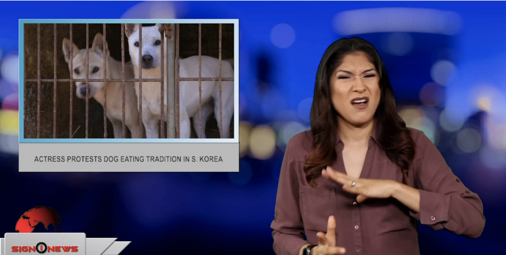 Sign1News anchor Crystal Cousineau - Actress protests dog eating tradition in S. Korea (ASL - 7.12.19)