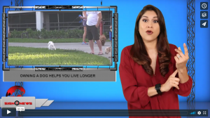 Sign 1 News with Crystal Cousineau - Owning a dog helps you live longer (ASL - 10.8.19)